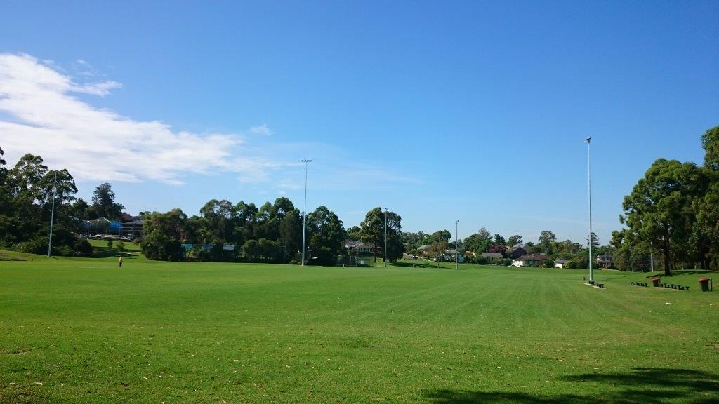 Dundas Park large Sporting field