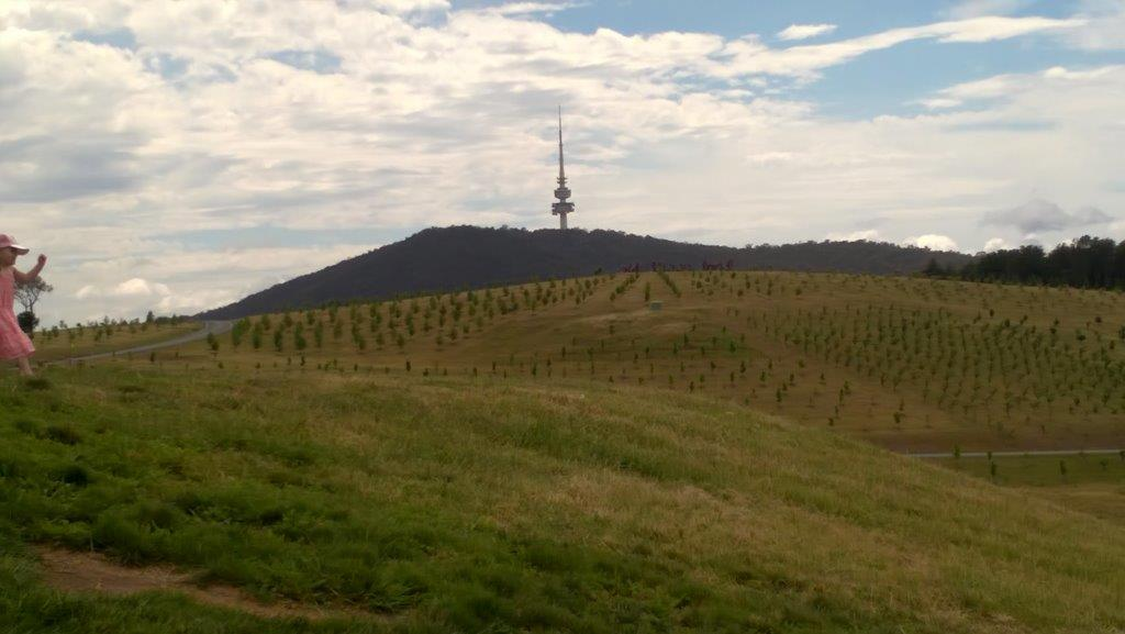 stunning views of Canberra and Telstra Tower at the National Arboretum Canberra