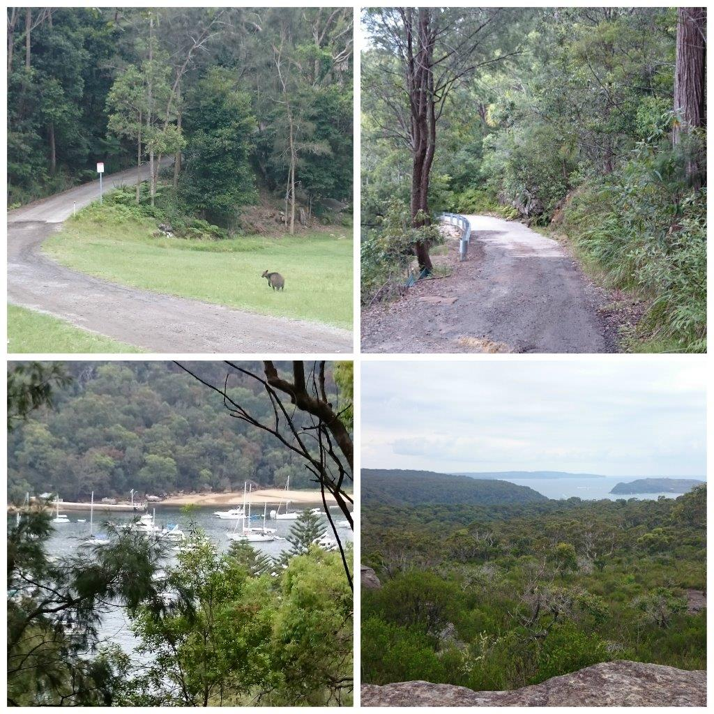 The Basin Trail Walking Track with scenic lookout to Barrenjoey Lighthouse
