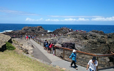 Top 11 things to do in Kiama with Kids