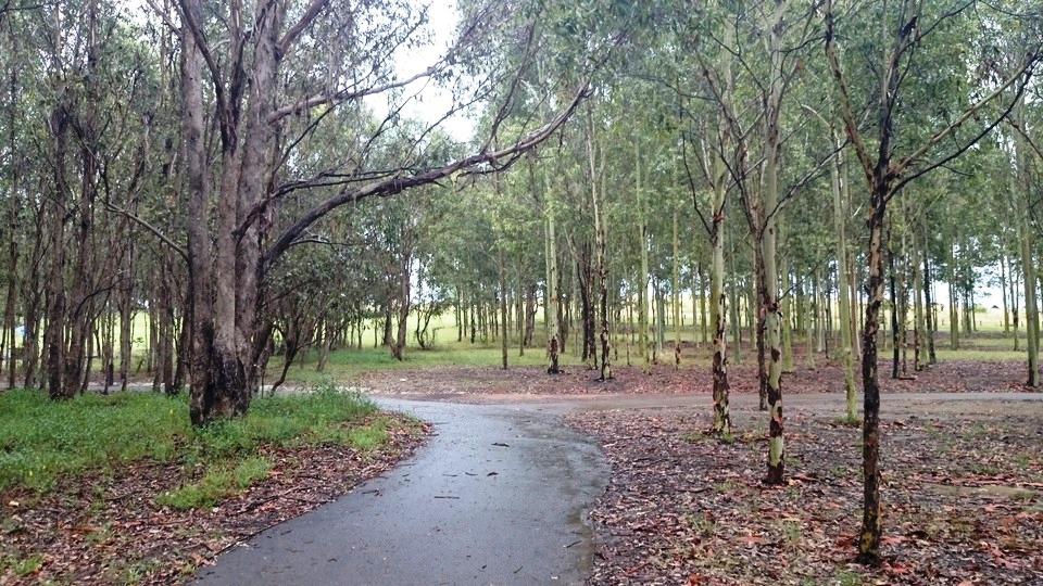 Rouse Hill Regional Parklands