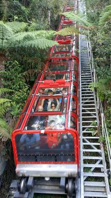 Scenic Railway - steepest inclined railway in the world