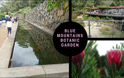 Blue Mountains Botanic Garden at Mount Tomah in the Autumn