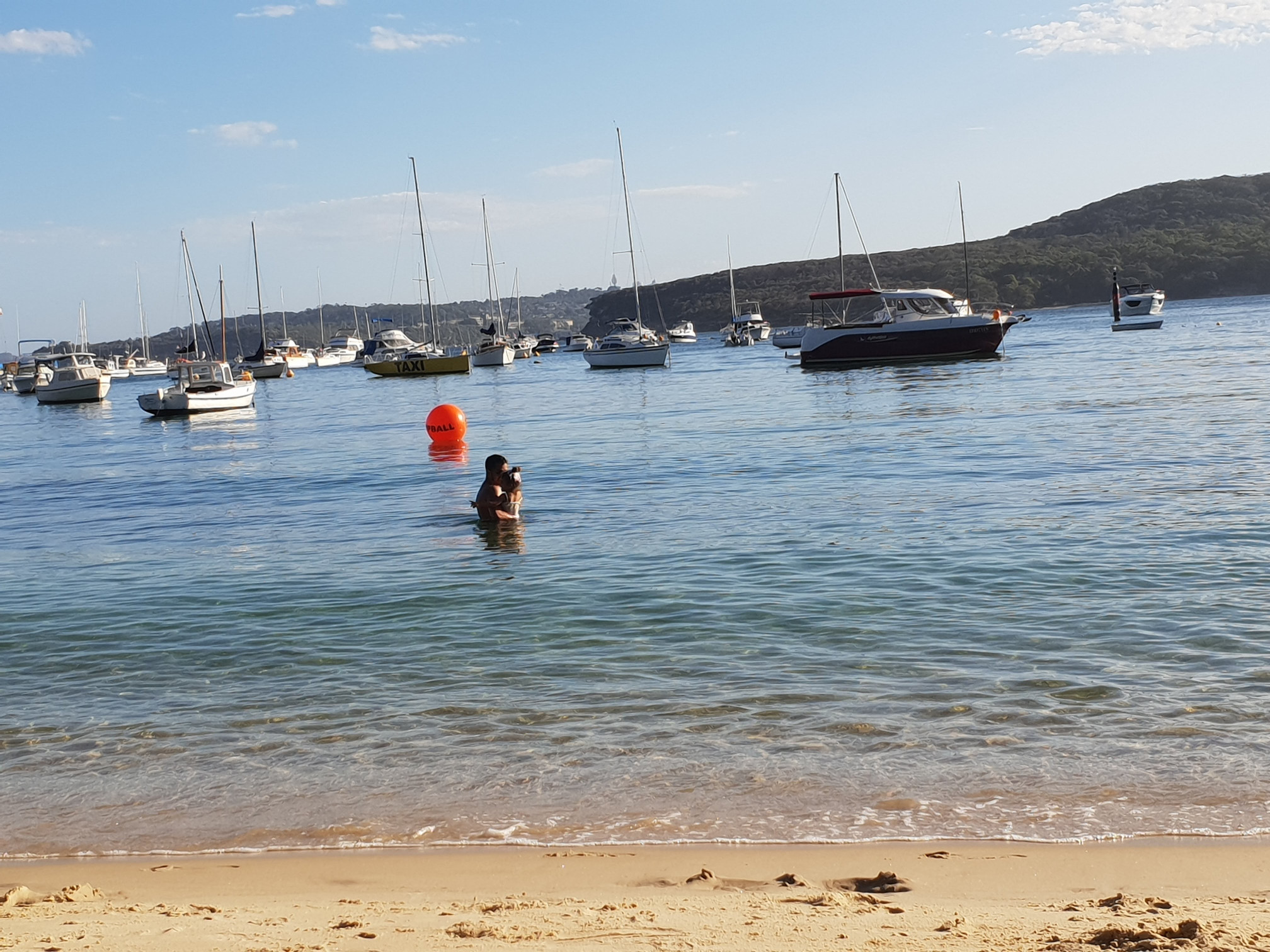 Enjoying the shallow waters of Little Manly Cove